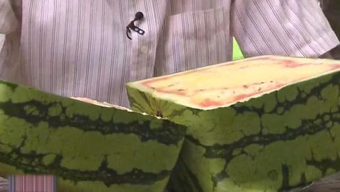 日本方形西瓜超市每天只卖一个,切开才知道难怪这么珍贵