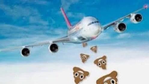飞机上的粪便排到哪去了?会砸到地上的人吗?看看空姐是怎么说的!