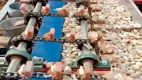 装蒜竟也用上了机械,真是太神奇, 科技就是这么先进!