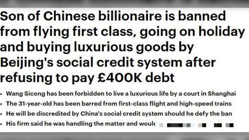 王思聪被限制奢侈消费引外媒关注!网友关注点却全在狗:他疯了