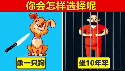 脑力测试:要动物还是自由!你会怎样选择的?!
