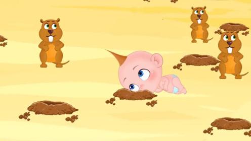 森林奇遇记,调皮鬼壮壮追赶林中动物,老爸为保护他惹怒土拨鼠!