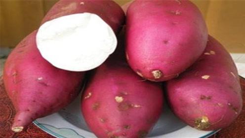 冬季爱吃红薯的要留意,现在知道还不晚,告诉家人,别再忽视