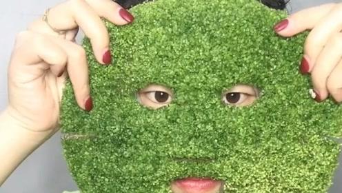 用完的面膜放了点水竟让长绿芽了,用来炒菜吃,你觉得怎么样?