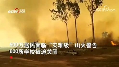 澳大利亚山火现场突发龙卷风 遮天蔽日场面震撼