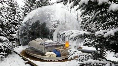 奇特的泡泡酒店,坐落于人迹罕至的小树林中,薄薄的一层十分温暖
