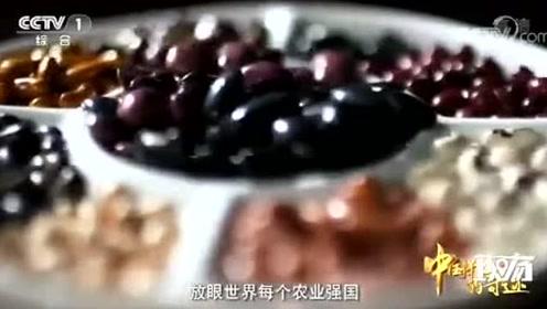 """揭秘中国""""种质库"""",储藏43.5万份种子,位居全球第二"""