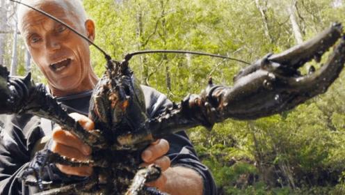 荒无人烟的小河沟,大叔在水里一抓,竟意外抓到近50岁的巨型龙虾