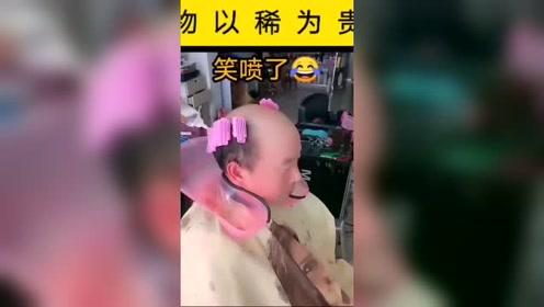 大爷也要当渣男?物以稀为贵,大爷想让头发蓬松起来!