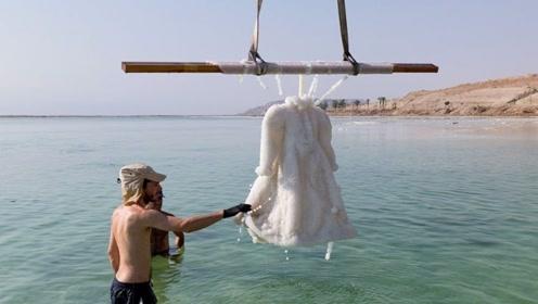 老外把裙子放在死海中浸泡,3年后变艺术品,价值高达150万!