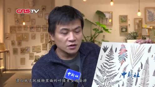 """武汉一男子收集200余类落叶赋予植物""""二次生命"""""""