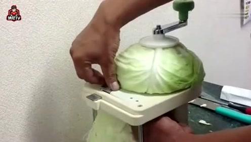 老外发明的切菜机,将菜放在上面,一下子就能切成丝!