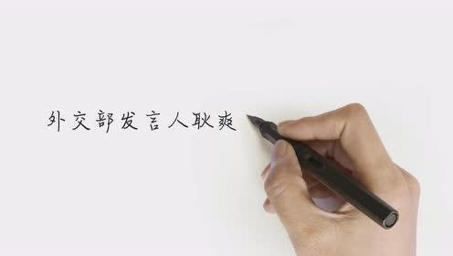 数百中国公民涉诈骗在马被捕,外交部:希望马方公正处理案件