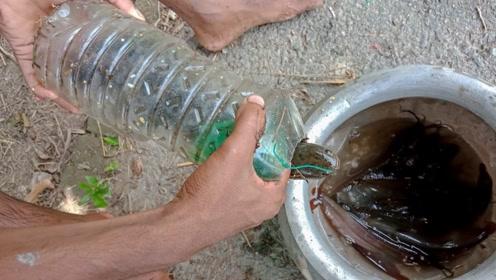 用塑料瓶制作捕鱼装置,屡试不爽!