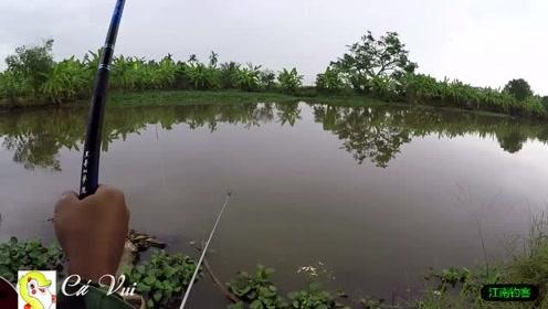 小河边大哥将钓竿撒下几次这下终于有了动静,一提钓就收获一条肥鱼
