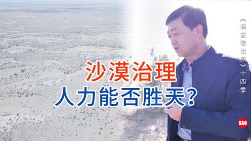 民勤10集:中国沙漠究竟如何有效治理,人力能否胜天?