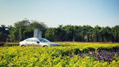 原汁原味的沃尔沃S60是如何兼顾安全和健康