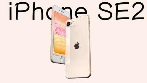 苹果良心了?iPhone se2海外突然曝光!库克再次清理库存!