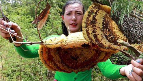 荒野生存:女子深山发现一个新鲜蜂巢,直接摘了吃,太生猛