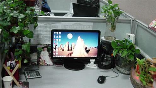 家居风水:办公室风水有讲究,摆上这一物,升职加薪不是梦