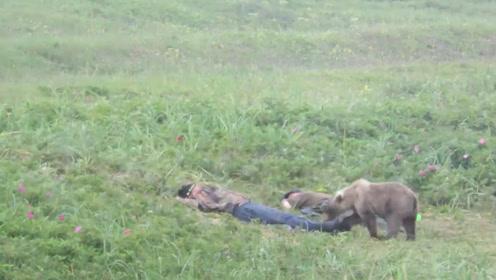 两名男子在草地上睡觉,一只熊走了过来,把男子吓得瞬间清醒了