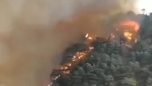 广东四会一山头发生山火 森林消防连夜奋战 直升机参与救火