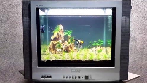 20几年前的黑白电视机,小伙脑洞大开改造成鱼缸,成品瞬间惊艳了