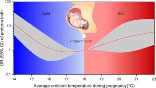 英国最新研究:高温天气会导致妊娠天数缩短、分娩提前