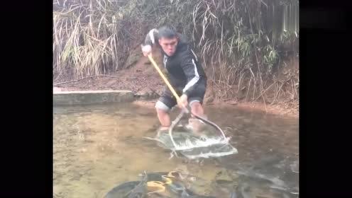 这小伙的操作有点看不懂,守着这么大的鱼塘,竟然捞不出鱼来!