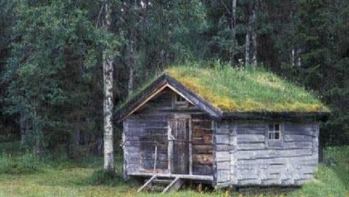 去俄罗斯旅游,为何不能靠近小木屋?导游:进去可能出不来