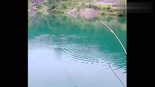 这是钓鱼最怕遇到的事,溜来溜去就是不见影,太耗体能了!