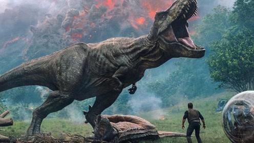 恐龙统治地球近2亿年,为什么没有诞生智慧?对比一下就知道了