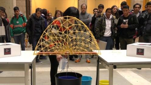 用3D笔绘制的各种桥梁,能承受住多大的重量?看后后深有感悟