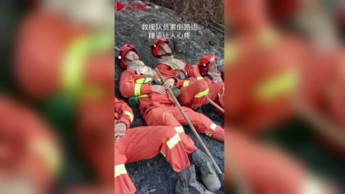 暖心又心疼!佛山山火中消防员救下一窝小奶狗 灭火后累倒在路边