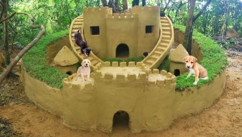 小伙收养了几只流浪狗,用黄泥木棍做小城堡,小狗有家了!
