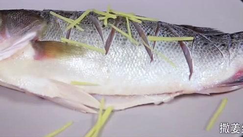 清蒸鲈鱼正宗做法,大厨教你做,清蒸鲈鱼!