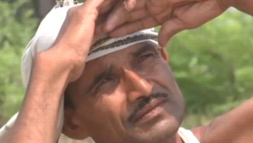 印度最高气温突破50℃,难道不怕热么?看完避暑方式笑出声!
