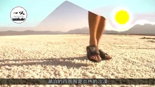 世界上最咸的湖泊,含盐量比死海还高,在沙漠中至今未枯竭!