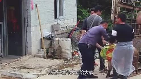 """汶川地震被埋了36天的""""猪坚强""""!如今怎么样了?看完很暖心!"""