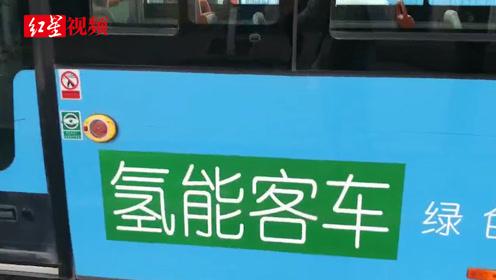 """""""庞氏""""青年全调查二:南阳水氢车停摆 石嘴山基地成僵尸企业"""