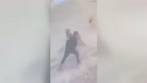 男子路边遭大型犬袭击 转身拳脚相加狗子秒怂