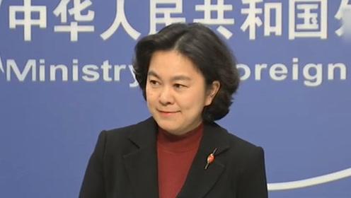 中国假警车在澳骚扰维吾尔人?华春莹哭笑不得:黑中国请用点脑子