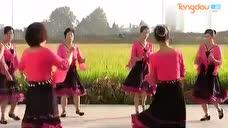 长乐珍珍广场舞《东边的草地上》