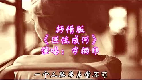 宇桐非抒情翻唱《逆流成河》,感受不一样的伤感音乐