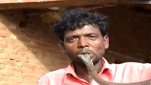 这位印度大哥一言不合就把活蛇给吞了,旁观者都看傻了眼