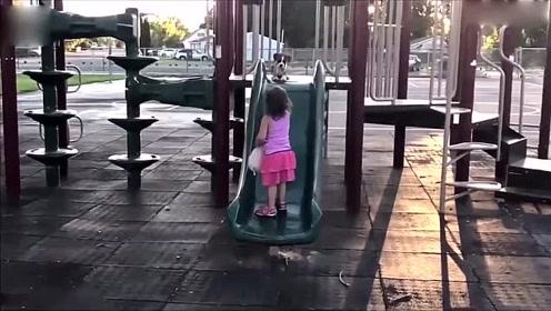 萌趣十足 两岁女童教九周大爱犬玩滑梯_01
