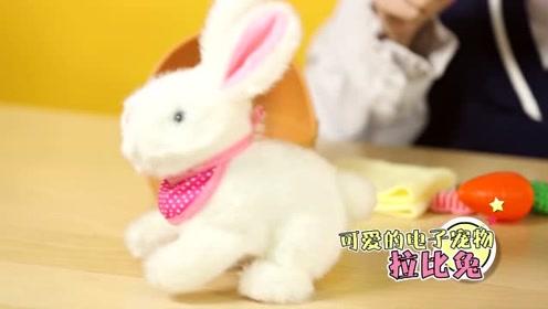 《猫扎特玩具》超可爱的电子宠物拉比兔!