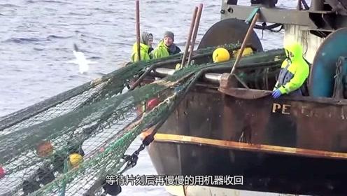 """渔民远洋捕捞海鱼,却不料遇到""""海盗"""",鱼都被打劫了!"""