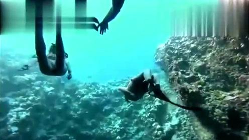 极限运动之自由潜水 看超模女生海底与鲸共舞 美不胜收!