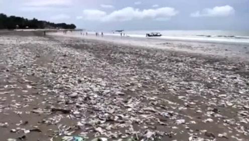 一夜暴风雨过后,旅游天堂巴厘岛海滩冲上成吨垃圾